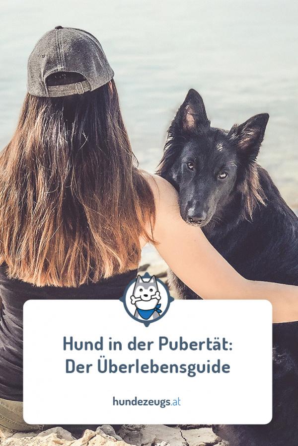 HUND PUBERTÄT WIE LANGE