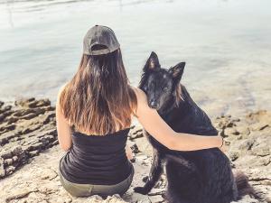 Hund in der Pubertät: Der Überlebensguide - Schöne Dinge unternehmen